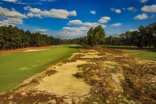 The irrigated areas at Pinehurst No 2 have been greatly reduced