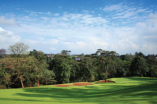 Windsor Golf Hotel and Country Club boasts some of the best conditioning of any course in Africa